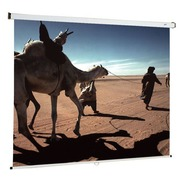 Wall projection screen manual Oray 200 x 200 cm