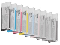 Epson T6067 - lichtzwart - origineel - inktcartridge (C13T606700)