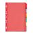 neutrale tabbladen in polypropyleen gekleurd