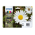 cartridge kleur epson bloem 18xl